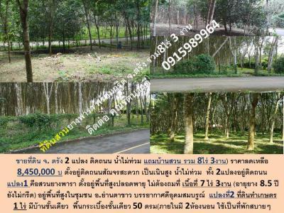 ที่ดิน 8450000 ตรัง ย่านตาขาว หนองบ่อ